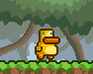 Gravity Duck